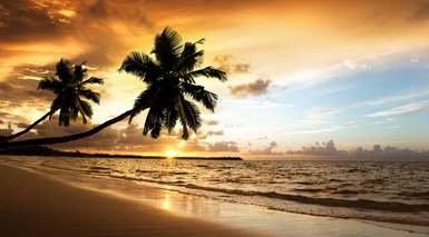 Punta Cana en Todo Incluido - Salida Especial 5 Noviembre