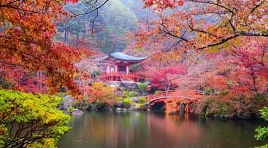 Japón con Visitas