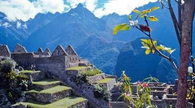 Tour Perú - Líneas de Nazca