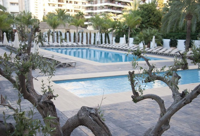 Piscine Hôtel Flash - Adults Only Benidorm