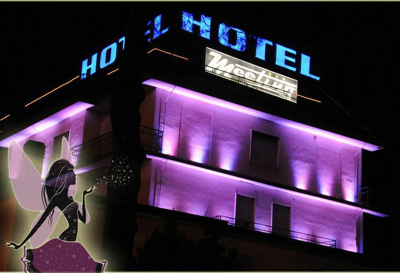 Hotel Meeting Rom