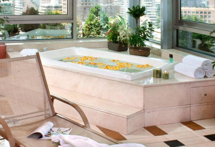 Wellness Hotel Intercontinental Santiago Las Condes