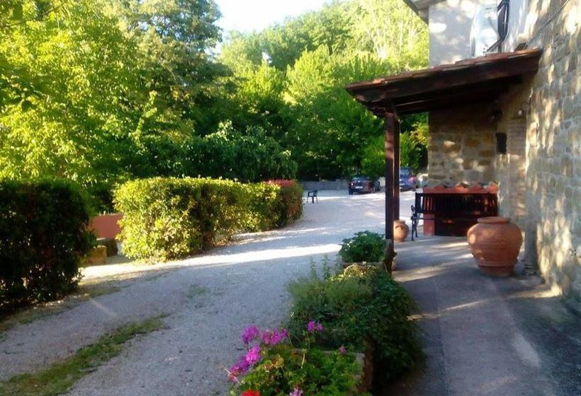 Agriturismo Il Noceto Assisi