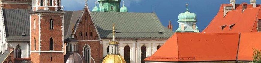 Polonia al Completo + Minas de Sal + Auschwitz