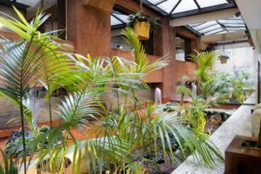 Hotel siete islas em madrid desde 38 destinia - Hotel siete islas madrid ...