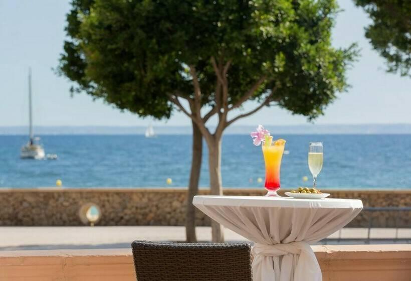 تراس فندق Tropico Playa بالما نوفا