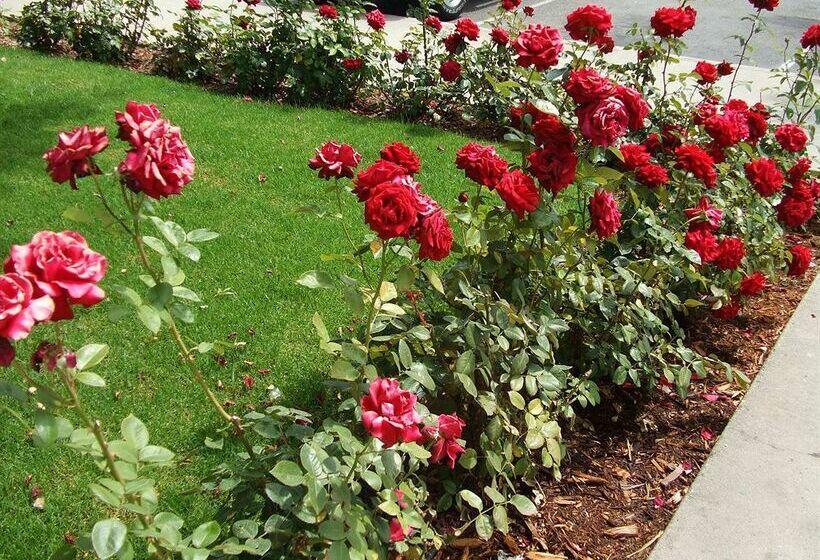 Hôtel Rose Garden Inn San Luis Obispo