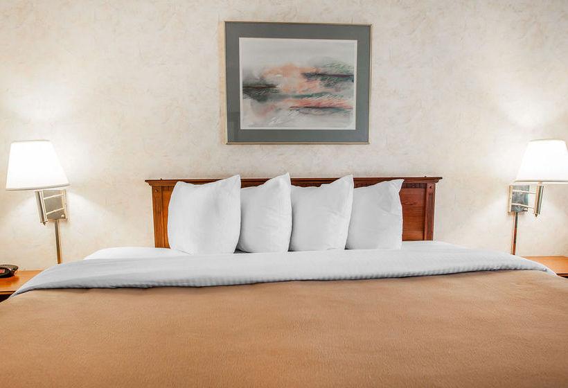 Hotel Comfort Inn Edwardsville The Best Offers With Destinia