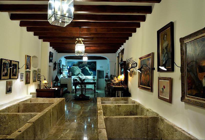 صورة الفندق فندق ريفى S'Olivaret ألارو