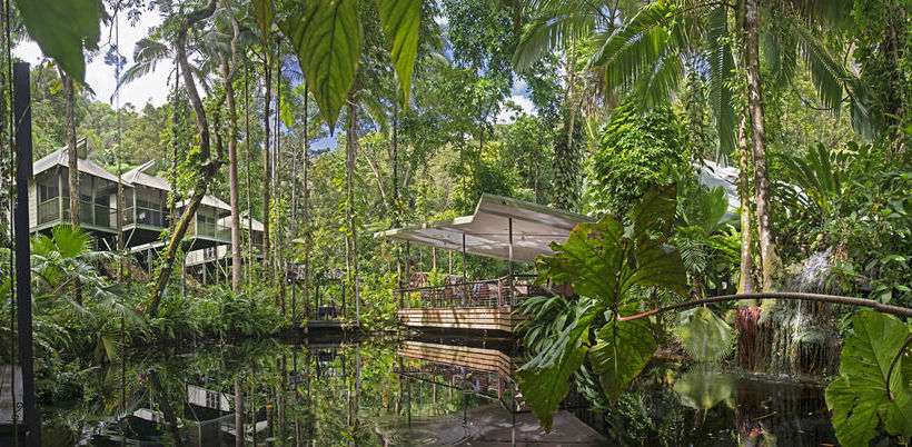 Aussenbereich Hotel Daintree Eco Lodge & Spa