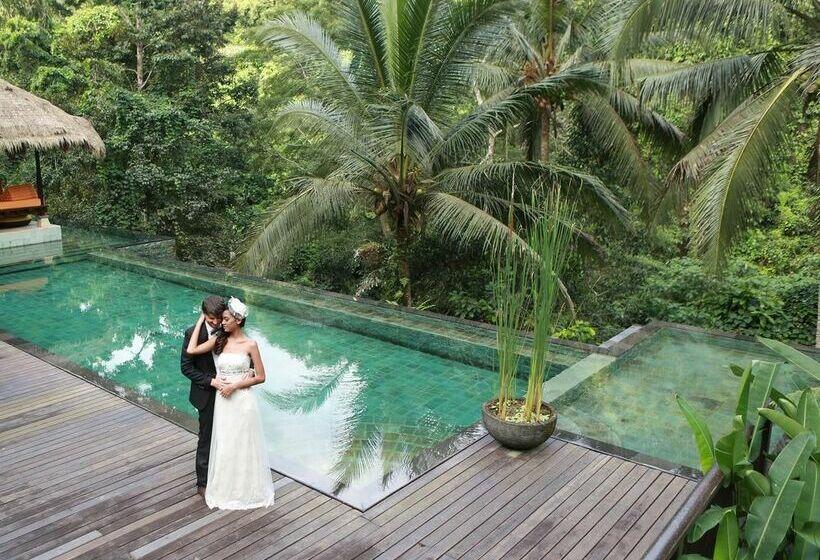 Hotel Ubud Hanging Gardens in Payangan, starting at £204   Destinia