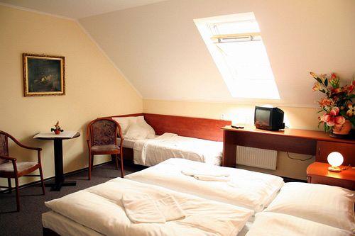Hotel U Hvezdy Prag