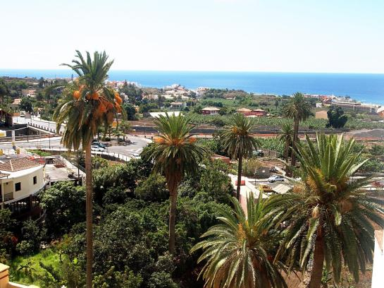 Hotel jardin concha in valle gran rey starting at 30 for Hotel jardin concha la gomera