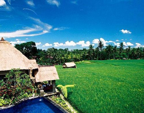 Hôtel Biyukukung Suites & Spa Ubud