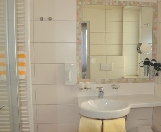 Hotel Zur Mühle, Bad Breisig: the best offers with Destinia