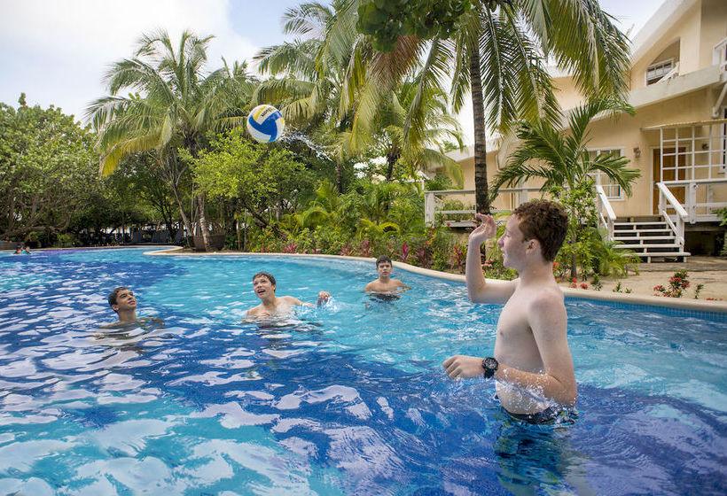 Paradise Beach Hotel Roatan Island